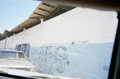 Mara Salvatrucha Graffiti